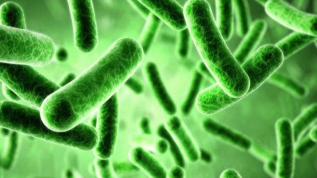 Machine learning and microbes: How big data is redefining biotechnology